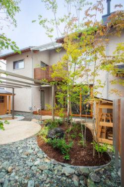 木に包まれるエコ心地の家